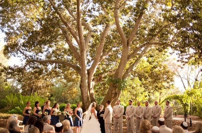 Botanical Garden Wedding