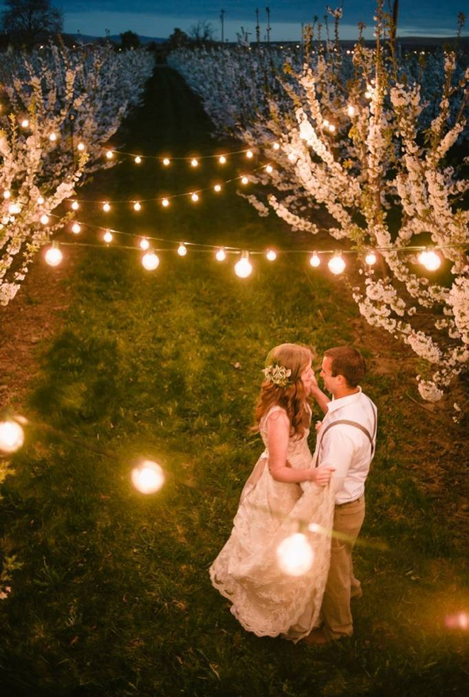 orchard wedding