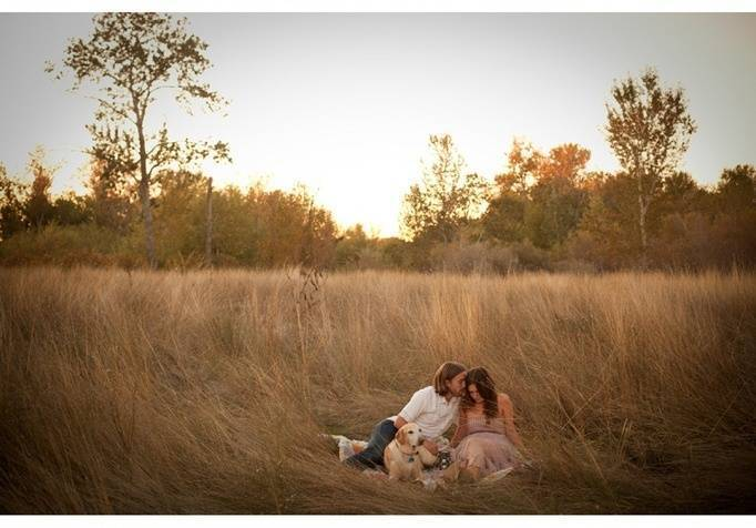 field engagement session