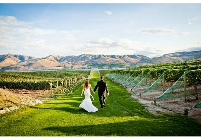 WA benson vineyard wedding