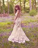 claire pettibone enchanted forest