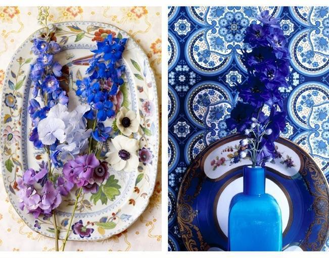 cobalt blue flowers