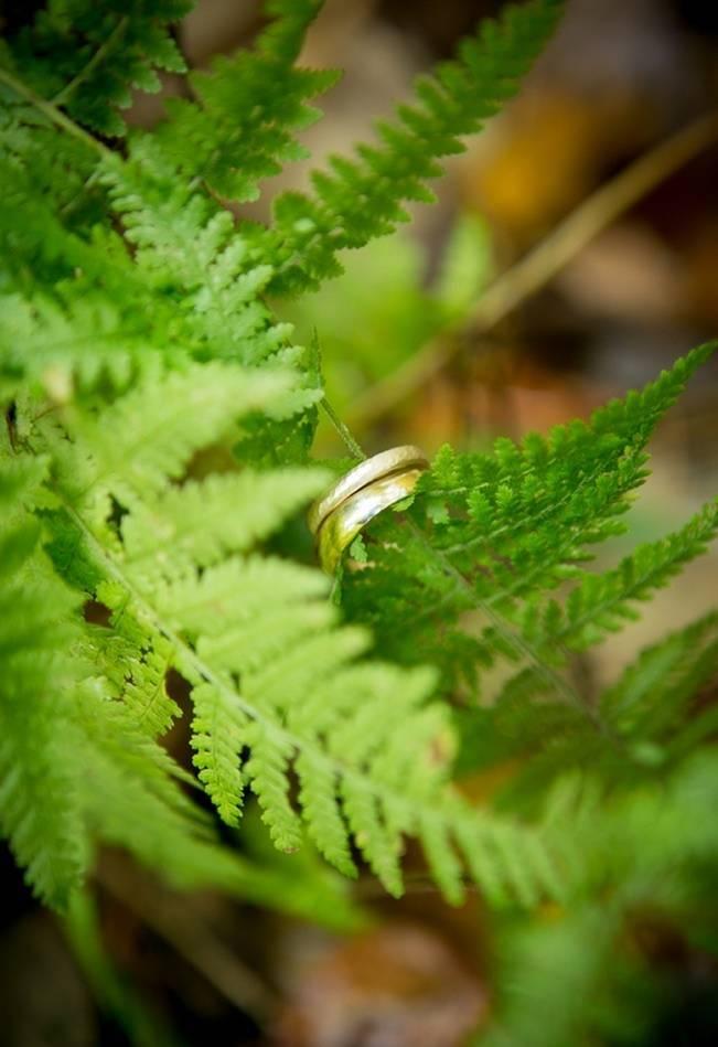 fern wedding