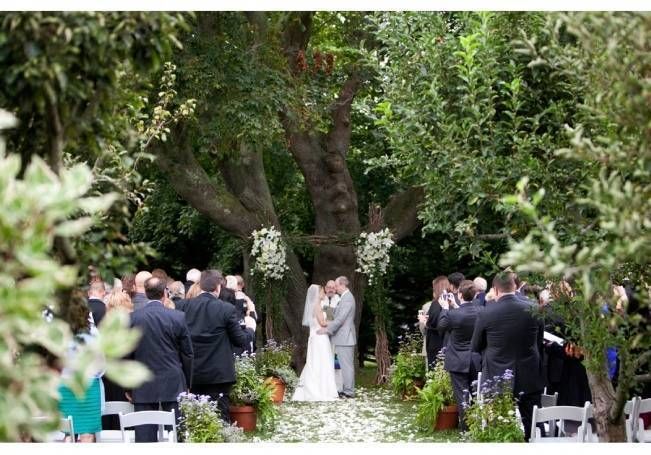 twilight style wedding ceremony