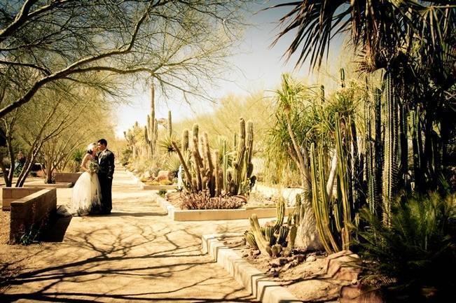 cactus wedding