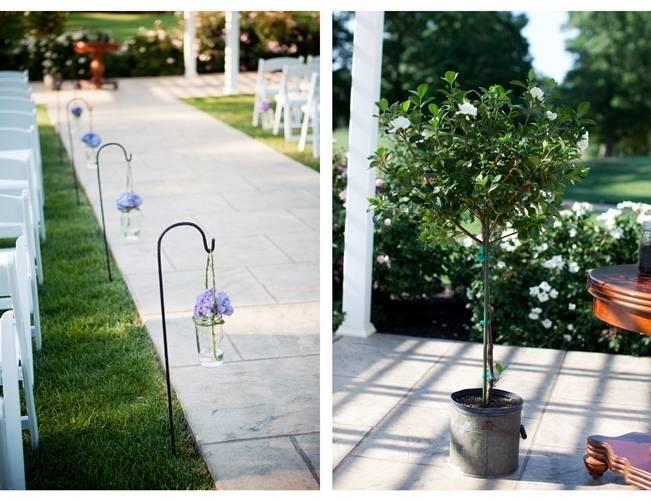China Blue Vine - Flor púrpura - un mundo verde