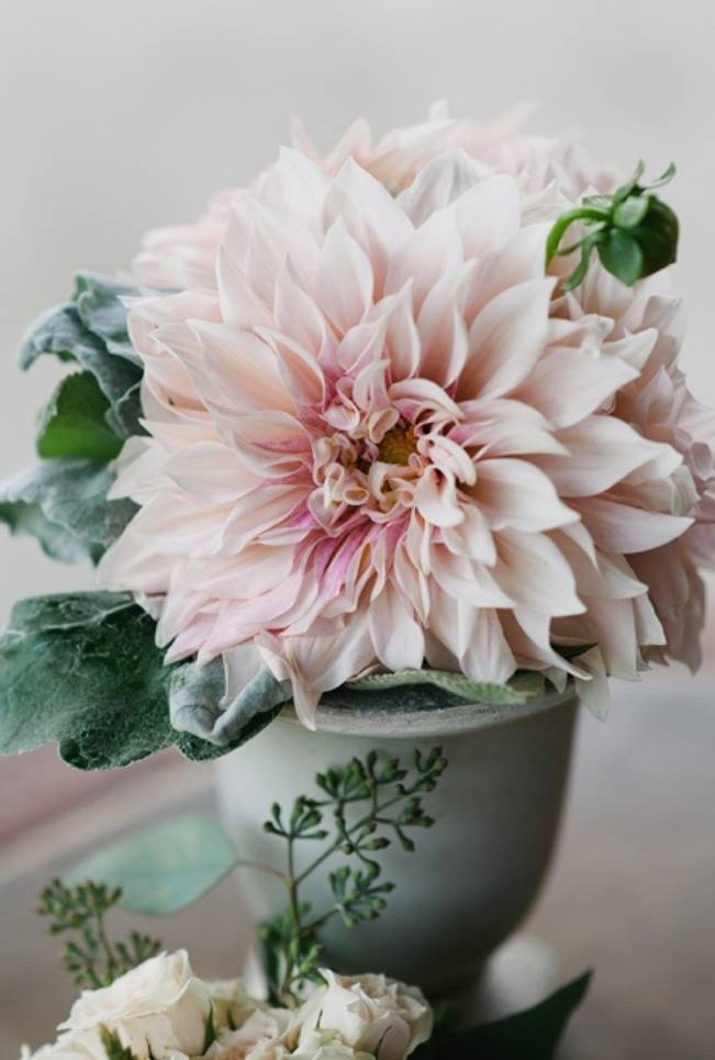 Wedding Flower Inspiration: Dahlia