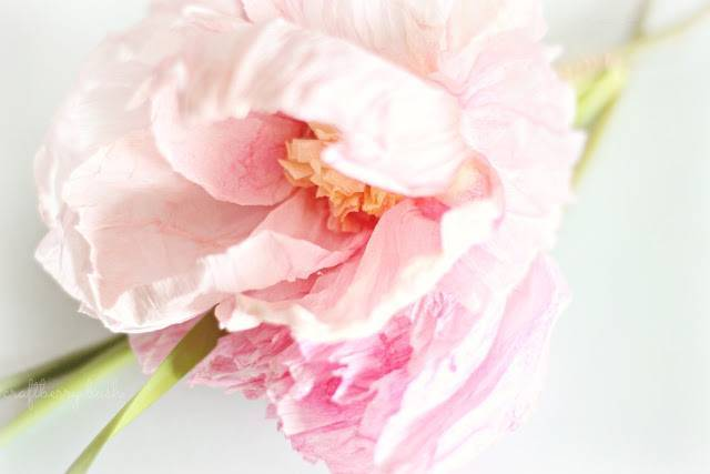 DIY: Crepe Paper + Watercolor Peonies