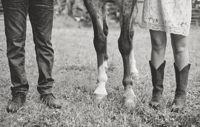 bride groom and horse