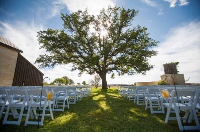 giant wedding tree