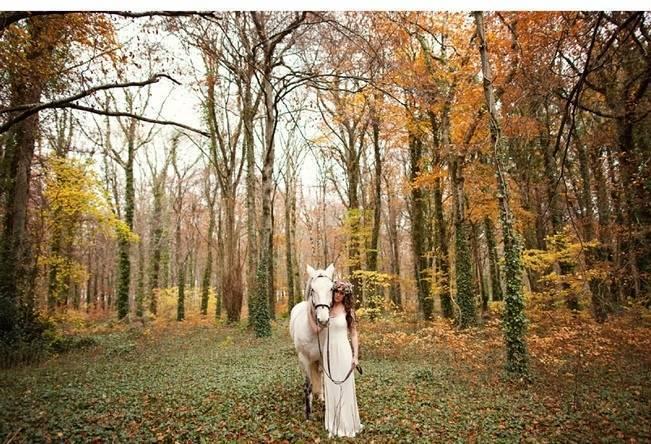 bride with white horse autumn