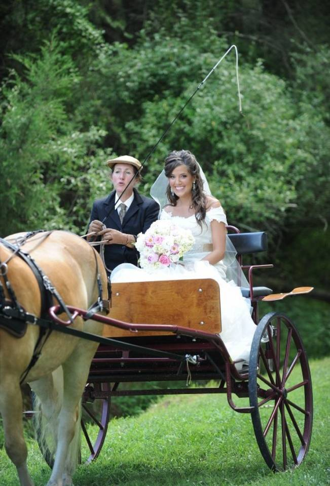 bride in horse and carriage
