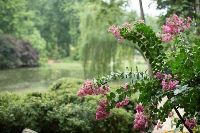 Navy + Pink Arboretum Wedding {Gayle Driver Photography}