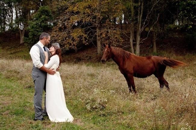 bride in groom in field of horses