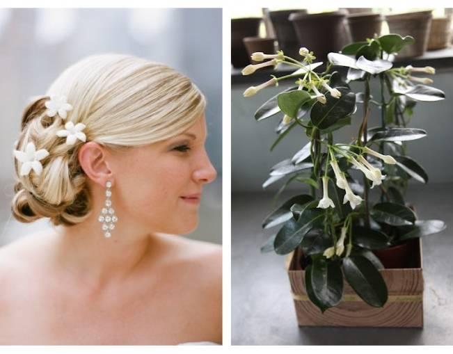wedding hair with stephanotis flowers