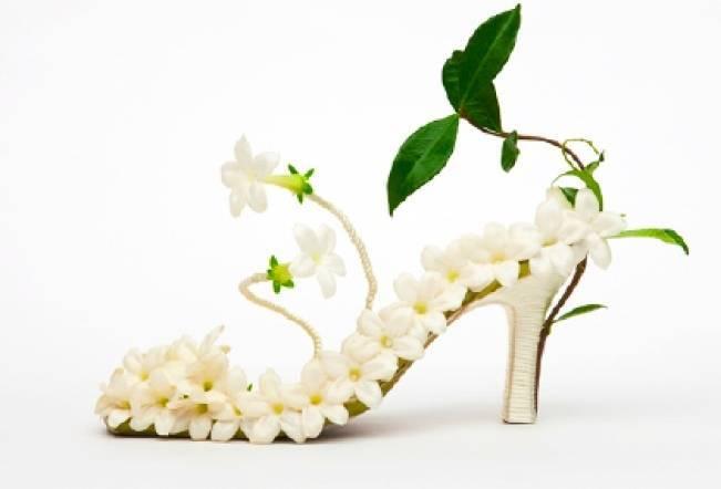 stephanotis shoe