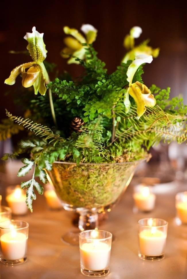 orchid and fern woodland centerpiece