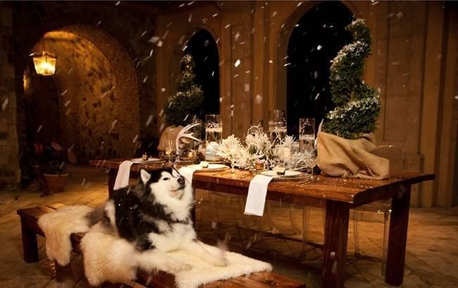 winter woodland styled shoot