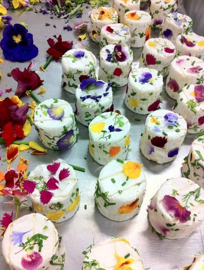 little cheeses with edible flowers