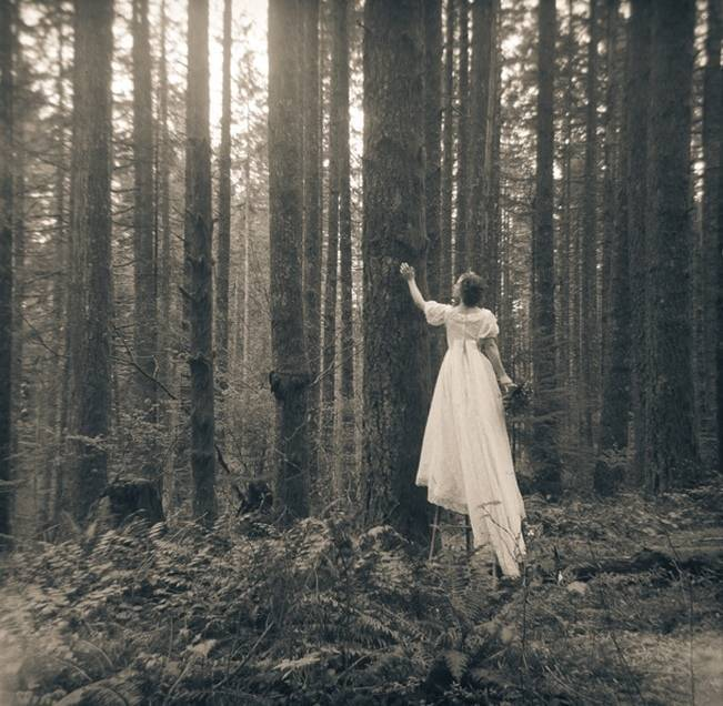 Forest Dreams Styled Shoot by Brilliant Imagery