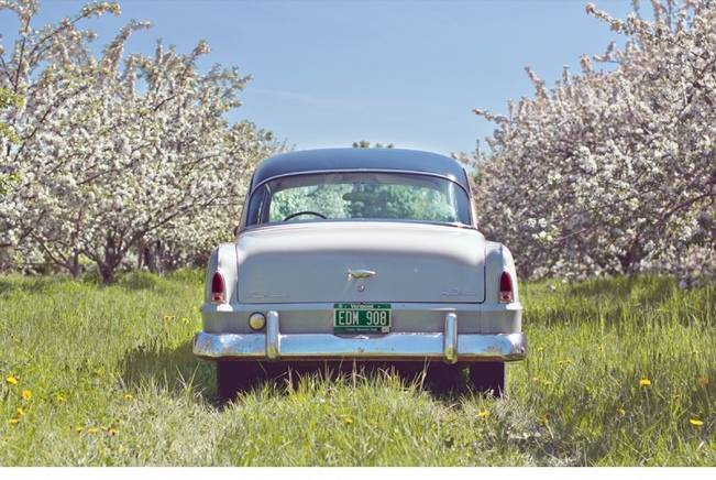 Vermont Vintage Orchard Shoot {Lis Photography} 7