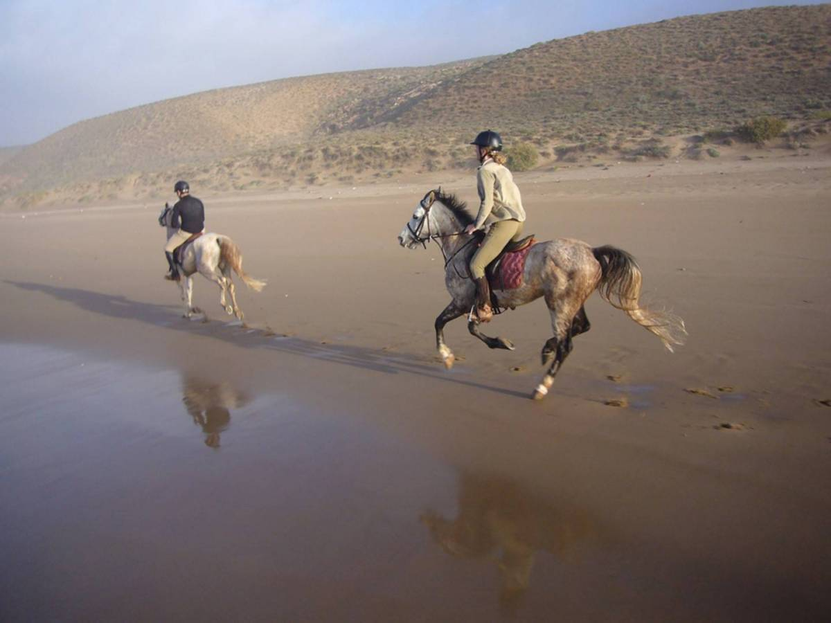 Ride into the Sunset: 5 Honeymoons on Horseback