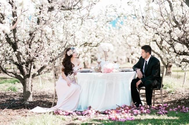 Blossoming Blush Orchard Elopement {Organic Album} 17