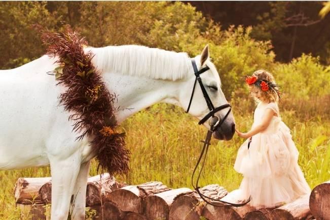 Autumn Fairytale at Timber Hill Farm {Lis Photography} 18