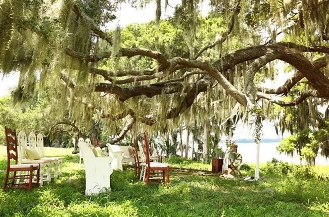 Florida Glamping Styled Wedding {Heather Rice Photography} 12