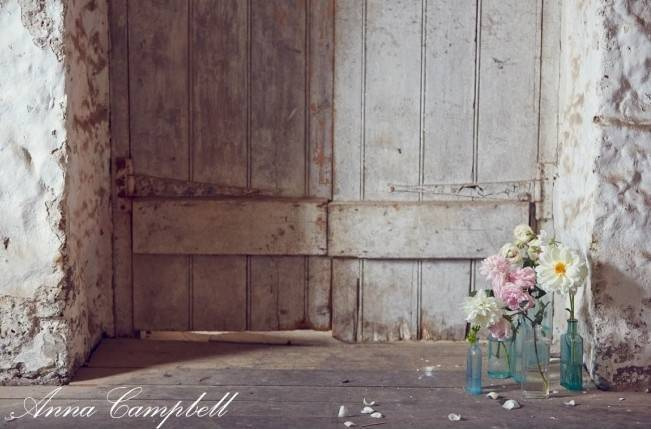 Anna Campbell Forever Entwined Collection 17