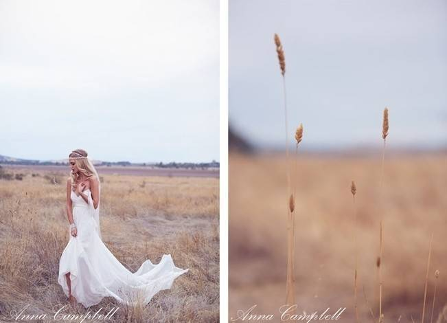 Anna Campbell Forever Entwined Collection 3