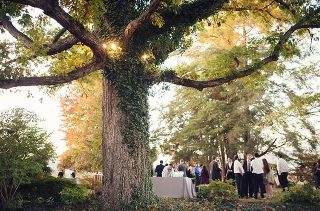 Orange and Gray Autumn Vineyard Wedding {Audra Wrisley Photography} 17