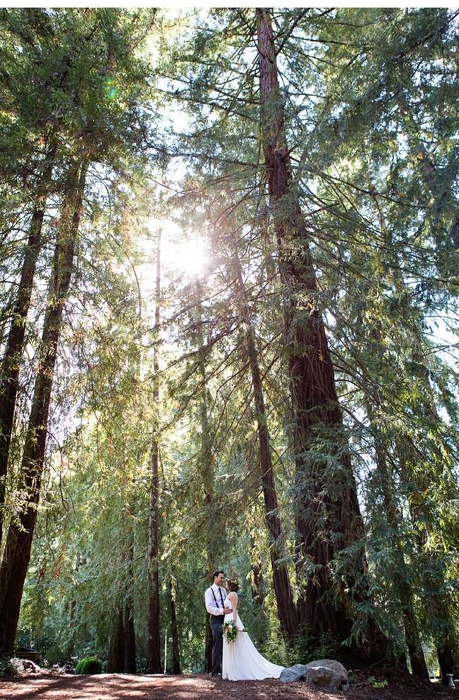 Rustic Redwood Forest Wedding {Rebekah Dotson Photography} 12