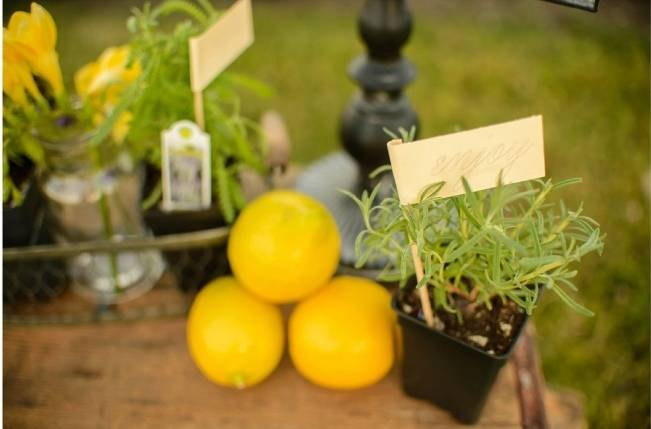 Upcycled Vintage Lavender + Lemon Styled Shoot {Katrina Amburgey Photography} 17