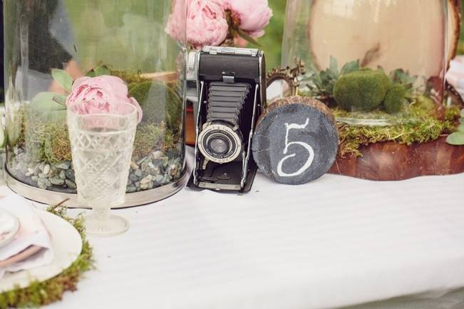 A Midsummer Night's Dream Whimsical Styled Shoot {Captured by Corrin} 1