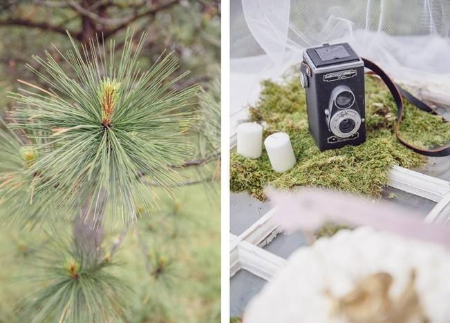 A Midsummer Night's Dream Whimsical Styled Shoot {Captured by Corrin} 28