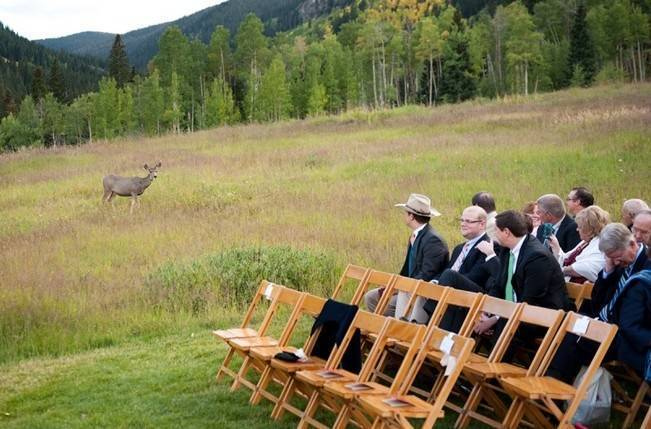 Rustic beaver creek wedding at beano s cabin brinton studios for Beano s cabin beaver creek