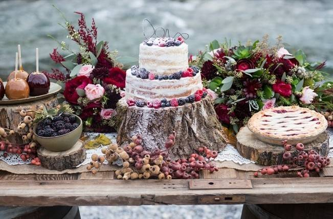 Rustic Merlot and Blush Rocky Mountain Wedding Inspiration 10