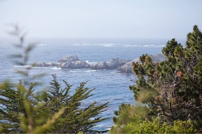 Big Sur, California Elopement {Laura Hernandez Photography} 1