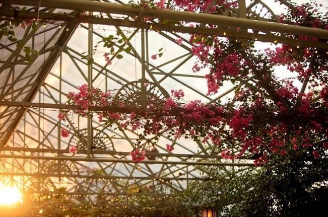 Pink and Ivory Vineyard Mountain Wedding {Pepper Nix Photography} 22