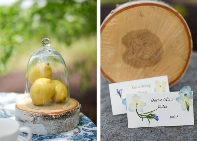 Blue + Yellow Country Chic Bridal Inspiration {Dani Fine Photography} 6