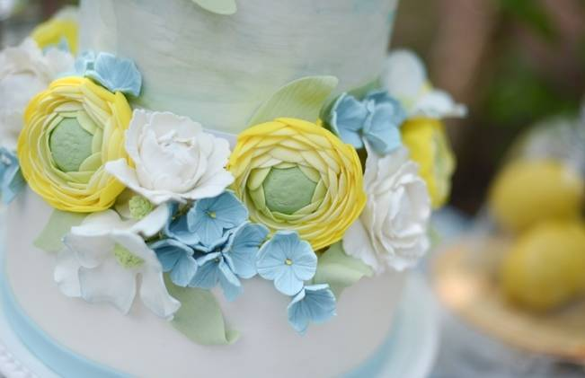 Blue + Yellow Country Chic Bridal Inspiration {Dani Fine Photography} 7