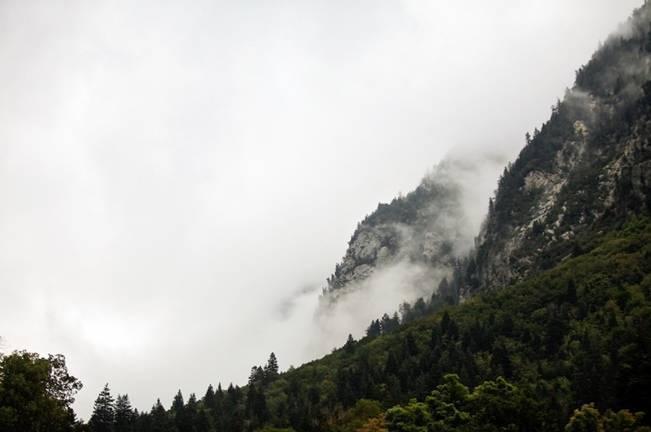 Misty Mountain Wedding at Millcreek Inn {Logan Walker Photography} 13