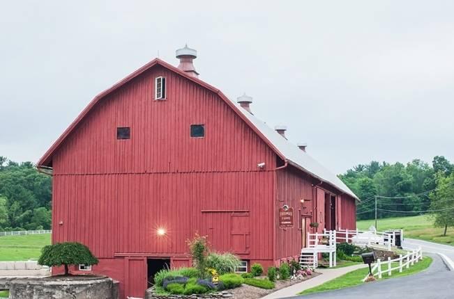 Rustic Pennsylvania Sunflower Wedding at Friedman Farms 17