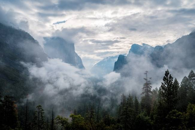 Misty Purple + Green Yosemite Valley Wedding {Duende Photo} 1