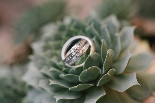 Garden Wedding at Southern Exposure Herb Farm {Allie Siarto Photography} 3