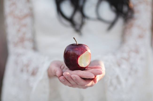 Snow White & The Huntsman Styled Wedding Shoot 14